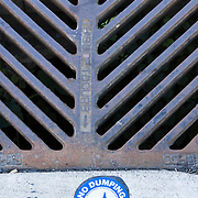 Ecological warning sign at street drain, Bellingham, Washington