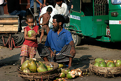BANGLADESH DHAKA KAWRAN BAZAAR 2MARB05 - Coconut stall at Kawran Bazaar vegetable market. The juice of a fresh coconut (Dab) is a very refreshing and healthy drink in hot climate. The Bazaar has been in the Tejgaon area for at least 30 years and is one of the largest markets in Dhaka city...jre/Photo by Jiri Rezac..© Jiri Rezac 2005..Contact: +44 (0) 7050 110 417.Mobile:  +44 (0) 7801 337 683.Office:  +44 (0) 20 8968 9635..Email:   jiri@jirirezac.com.Web:    www.jirirezac.com..© All images Jiri Rezac 2005- All rights reserved.