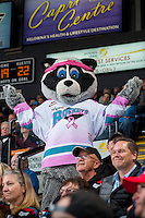KELOWNA, CANADA - OCTOBER 14: Rocky Racoon, the mascot of the Kelowna Rockets stands with fans on October 14, 2015 at Prospera Place in Kelowna, British Columbia, Canada.  (Photo by Marissa Baecker/Shoot the Breeze)  *** Local Caption *** Rocky Racoon;