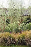 Border with Stipa arundinacea  Allium 'Purple Sensation'  Anthriscus sylvestris  Willow stems & foliage  brick farm outbuildings  Blackpitts Farm  James Alexander-Sinclair's garden