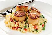 food photography,photos,miami,south florida,scallops