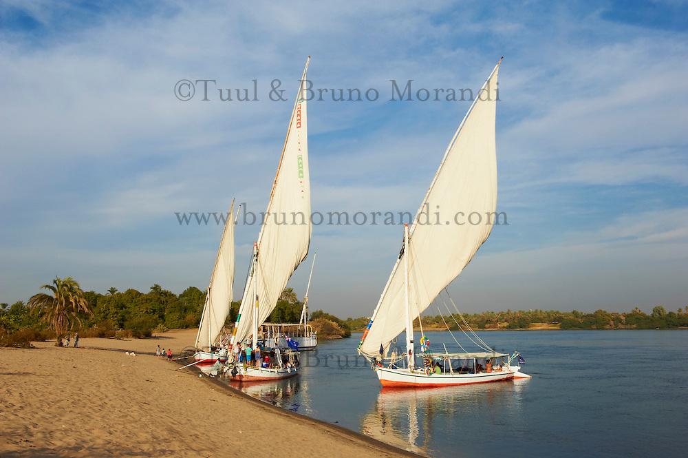 Egypte, Haute Egypte, croisiere sur le Nil entre Louxor et Assouan // Egypt, cruise on the Nile river between Luxor and Aswan