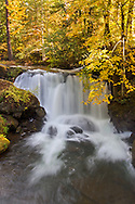 Whatcom Falls on Whatcom Creek in Whatcom Falls Park in Bellingham, Washington State, USA
