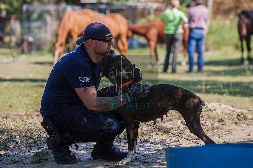Rowdy Shaw, HSUS senior field responder, plays with a dog during a raid on a puppy mill in Johnston, SC on Tuesday, Sept. 11, 2012. HSUS workers found over 200 dogs, nine horses and 30-40 fowl.
