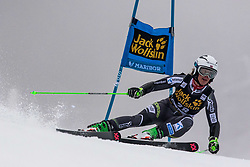 HOLTMANN Mina Fuerst of Norway competes during  the 6th Ladies'  GiantSlalom at 55th Golden Fox - Maribor of Audi FIS Ski World Cup 2018/19, on February 1, 2019 in Pohorje, Maribor, Slovenia. Photo by Matic Ritonja / Sportida