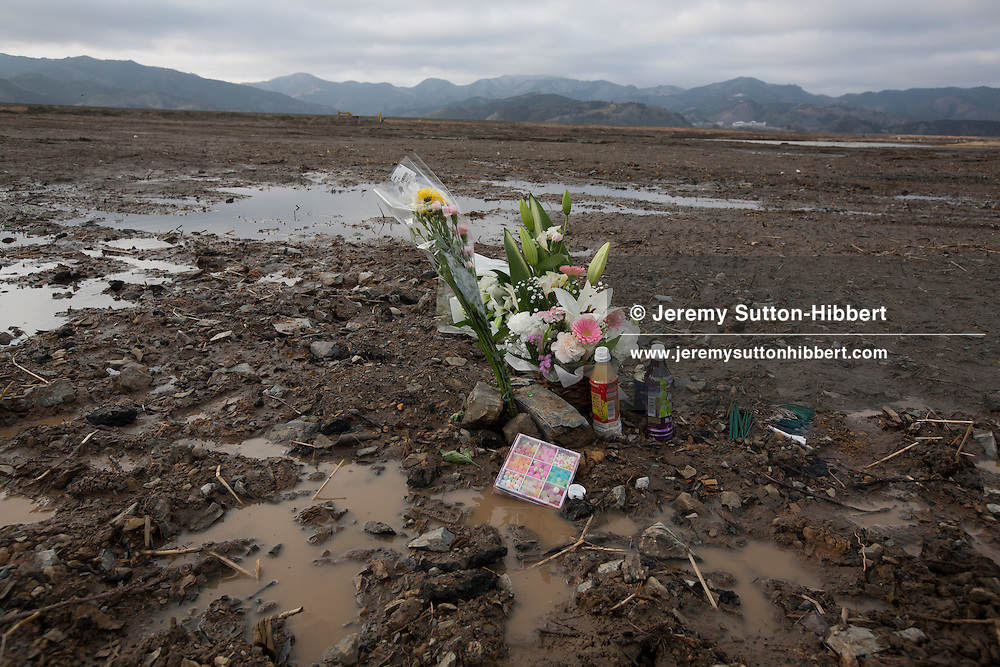 Flowers mark the spots where homes once stood and where people died in the 2011 tsunami, in the muddy plain where once stood the community of Kamaya, on the 1 year anniversary of the March 11th 2011 earthquake and tsunami, in Kamaya, Tohoku region, Japan on Sunday 11th March 2012..The search continues on this area of land for missing school children from the nearby Okawa Elementary School where 74 children and their 10 teachers died.