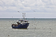 A fishing boat surrounded by sea gulls arrives back into harbour at Hastings, West Sussex.