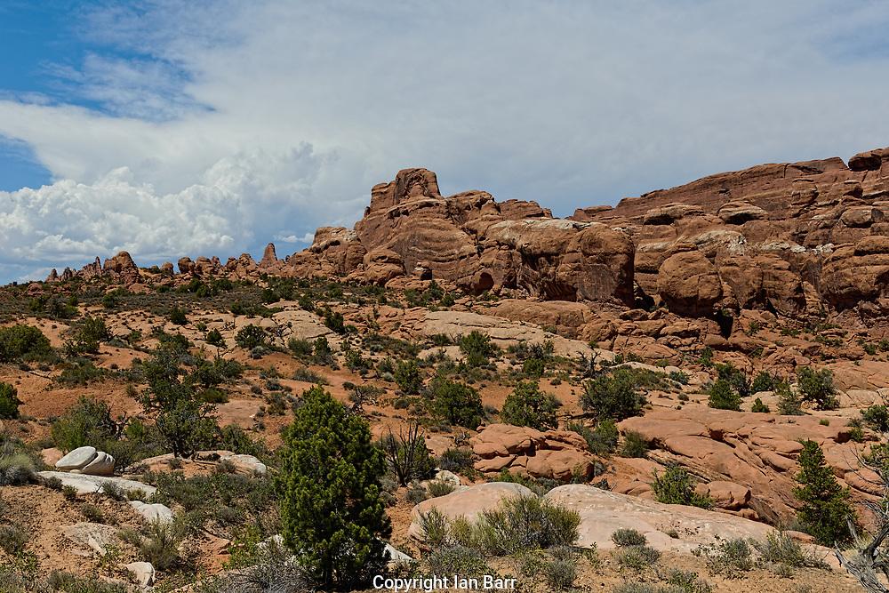 Arches National Park, Utah,Rugged rocky desert landscape.