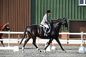 15 - 22nd Sep - Dressage