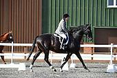 Barleylands Equestrian Centre