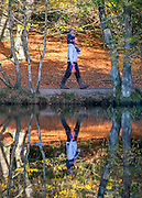 © Licensed to London News Pictures. 27/10/2014. Burnham, UK. A man carries a small boy on his shoulders.  People walk through the autumnal trees in the mooring sunshine at Burnham Beeches an area of 220 hectares of ancient woodland in Burnham, Buckinghamshire. Today 27th October 2014. Photo credit : Stephen Simpson/LNP