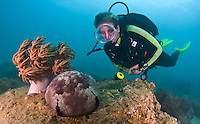Viet Nam is fast becoming a holiday and resort mecca. Saigon (Ho Chi Minh City), Nha Trang, Hoi An and Can Dao are all resort areas. Scuba diving and dive training is very popular here. The Viet Nam city of Nha Trang in Southeast Asia is a booming new holiday center. It is a center for scuba diving fun and instruction.
