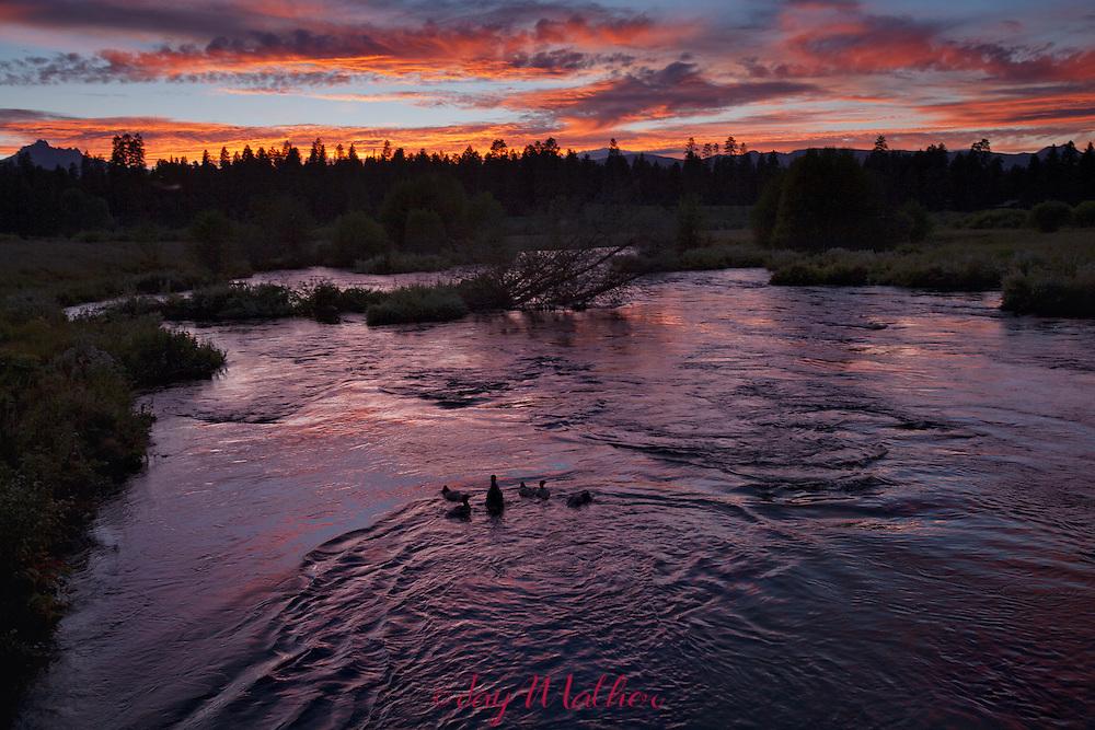 Sunset on the Metolius River near Camp Sherman, Oregon
