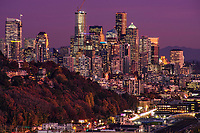 Seattle Metropolis in Autumn
