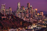 Seattle Metropolis in Autumn