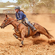 2018-11 Comboyne Campdraft, NSW