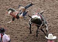 Bull Rider gets tossed, 26 July 2007, Cheyenne Frontier Days