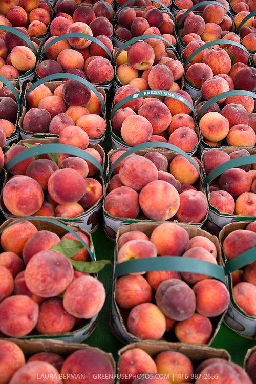 Baskets of locally grown Red Haven peaches at a farmers market.