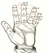 The Guidonian Hand, a mnemonic device to aid the learning of sight singing; a precursor of Tonic Sol-fa. Devised by the Guido of Arezzo (991/992-after 1033), Benedictine monk.
