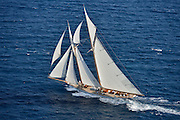 "France Saint - Tropez October 2013, Classic yachts racing at the Voiles de Saint - Tropez<br /> <br /> C,A9,ELENA OF LONDON,""50,8"",GOELETTE AURIQUE/2009,HERRESHOFF"