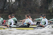 London, Great Britain, Cambridge, Listo left to right, Ben RUBLE, Henry HOFFSHOT and Vincent BERTRAM  during  the BNY Mellon, 2016 University Men's Boat Race, Trail Eights Race.  Putney to Mortlake. ENGLAND. <br /> <br /> Sunday 13.12.2015<br /> <br /> [Mandatory Credit; Peter Spurrier/Intersport-images]<br /> <br /> CUBC Trial VIII's between FUERTE on Surrey and LISTO on Middlesex<br /> <br /> FUERTE, Bow, Peter Carey, 2, Patrick Elwood, 3, Alister Taylor, 4, Peter Rees, 5, Charlie Fisher, 6, Ali Abbasi, 7, Luke Juckett, Stroke, Lance Tredell, Cox, Ian Middleton<br /> <br /> LISTO, Bow, Piers Kasas, Felix Newman, 3, Sam Ringer, 4, Joe Carroll, 5, Clemens Auersperg, 6, Vincent Bertram, 7, Henry Hoffstot, Stroke, Ben Ruble, Cox, Hugo Ramambason