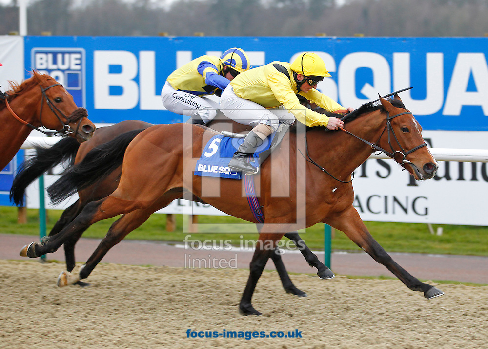 Picture by John Hoy/Focus Images Ltd +44 7583 422396.16/03/2013.Andrea Atzeni Davies riding Farraaj winning The Blue Square Bet Winter Derby at Lingfield Park, Lingfield, Surrey