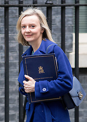 © Licensed to London News Pictures. 07/02/2017. London, UK. Justice Secretary and Lord Chancellor Liz Truss arriving at Downing Street for a Cabinet meeting this morning. Photo credit : Tom Nicholson/LNP