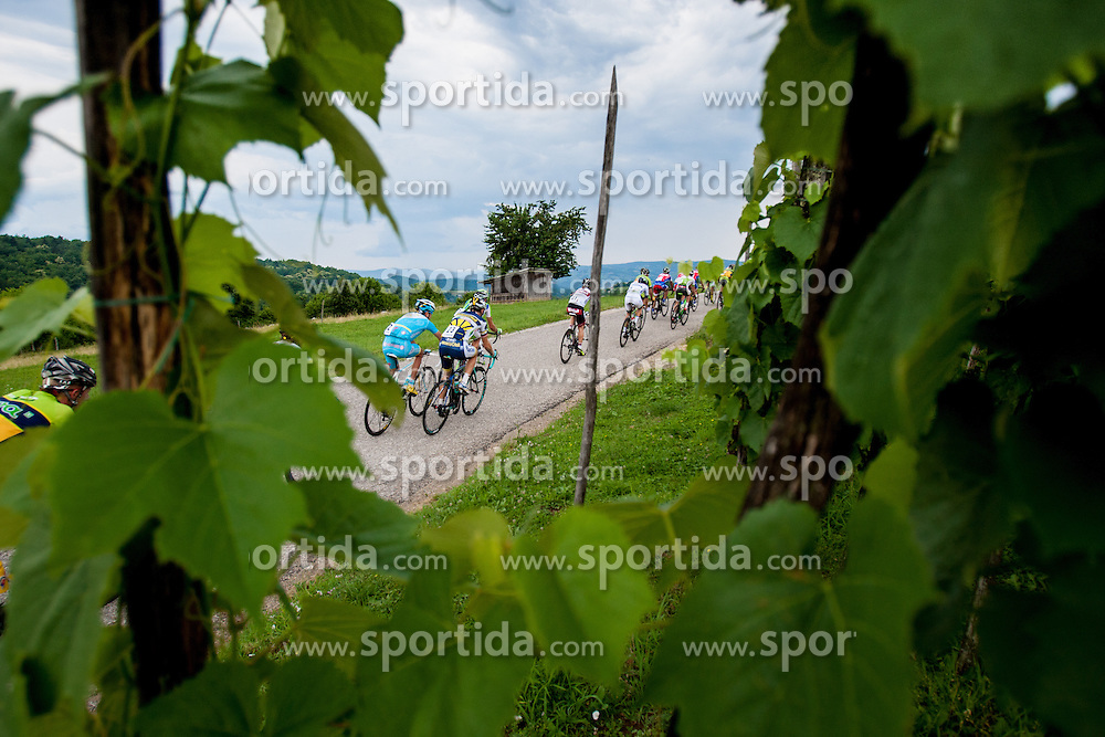 Cyclists during Slovenian National Championship in Road Cycling, on June 23, 2013, in Gabrje, Slovenia. (Photo by Urban Urbanc / Sportida.com)