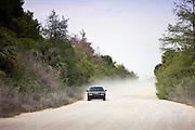 Car on dusty Turner River Road, Florida Everglades, USA