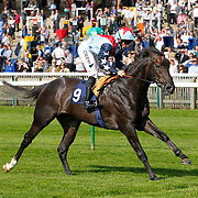 Master Of The World and Neil Callan winning the 2.00 race