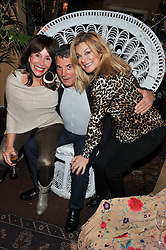 Left to right, DAVID & BARBARA DEIN and JILLY JOHNSON at a party to celebrate the publication of Seductive Interiors by Sara Hersham Loftus at Julie's, 135 Portland Road, London W11 on 15th November 2012.