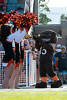 KELOWNA, BC - AUGUST 3:  The mascot of the Okanagan Sun flirts with cheerleaders at the Apple Bowl on August 3, 2019 in Kelowna, Canada. (Photo by Marissa Baecker/Shoot the Breeze)