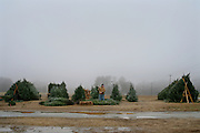 An image from the series Season's Greetings, documenting Christmas in my native North Carolina.<br />