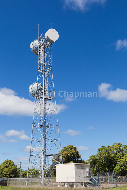microwave parabolic dish antenna radio link on lattice tower with equipment shelter in Gumlu, Queensland, Australia