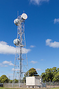 microwave parabolic dish antenna radio link on lattice tower with equipment shelter in Gumlu, Queensland, Australia