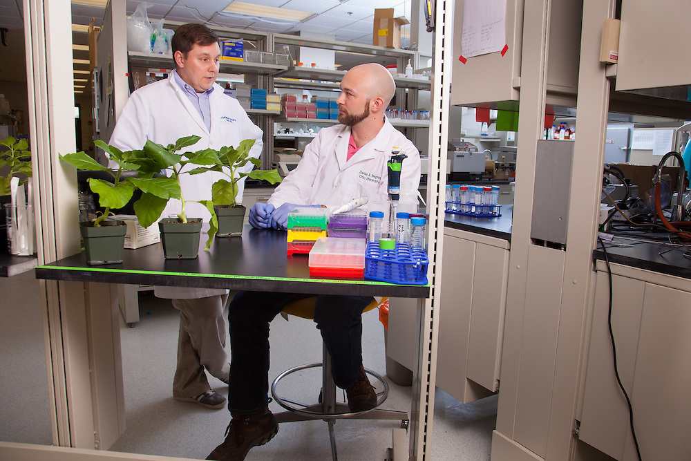 Assistant Professor Michael Held, left, and student Daniel B. Nething, Biochemistry Research Facility Ohio University. © Ohio University / Photo by Jonathan Adams