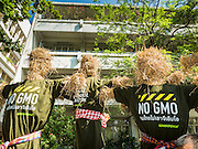 09 DECEMBER 2015 - BANGKOK, THAILAND:  Straw mannequins representing non GMO crops during a rally in Bangkok. About 50 environmental activists met near Government House in Bangkok to protest against the Biological Safety Bill being debated in the Thai legislature. The bill will allow use of genetically modified organisms (GMOs) for commercial purposes. Political gatherings of more than five people are prohibited by the military government and the protestors were not allowed to march to Government House or directly confront legislators.    PHOTO BY JACK KURTZ