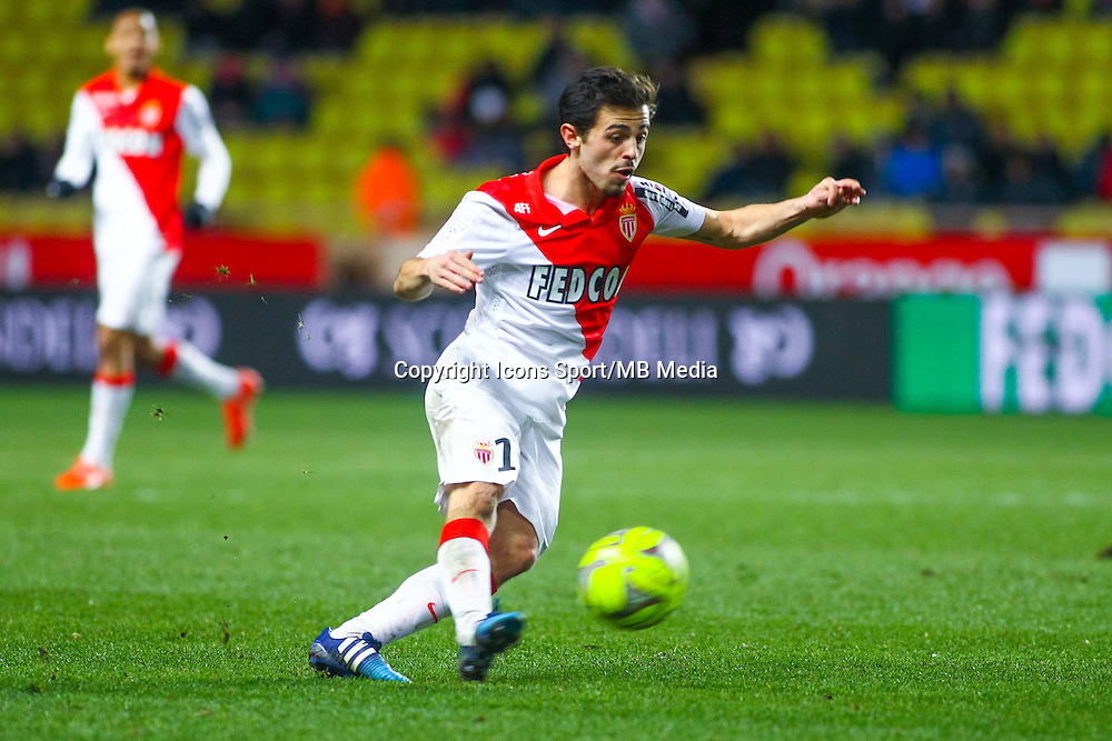 Adriano Pereira Da Silva - 01.02.2015 - Monaco / Lyon - 23eme journee de Ligue 1 -<br /> Photo : Serge Haouzi / Icon Sport