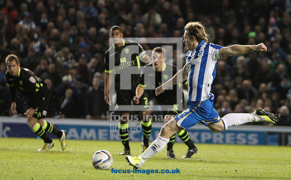 Picture by Paul Terry/Focus Images Ltd +44 7545 642257.02/11/2012.Craig Mackail-Smith of Brighton and Hove Albion scores the first goal during the npower Championship match at the American Express Community Stadium, Brighton and Hove.