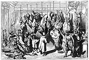 Franco-Prussian War 1870-1871: Siege of Paris September 1870 to late January 1871.  An English butcher's Boulevard Haussmann, with meat from animals  from the Jardins des Plantes (Paris Zoo) for sale, including elephant.  Wood engraving.
