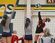 West Delaware's Haley Morrison (8) goes up for a kill as Cedar Rapids Xaver's Lizzie Udelhoven (12) and Britni Scholtes (11) reach up to try to block it in the Class 4A regional final match at Beckman High School in Dyersville on Tuesday, November 5, 2013. West Delaware defeated Xavier 3-1.