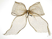 a golden lace bow tie