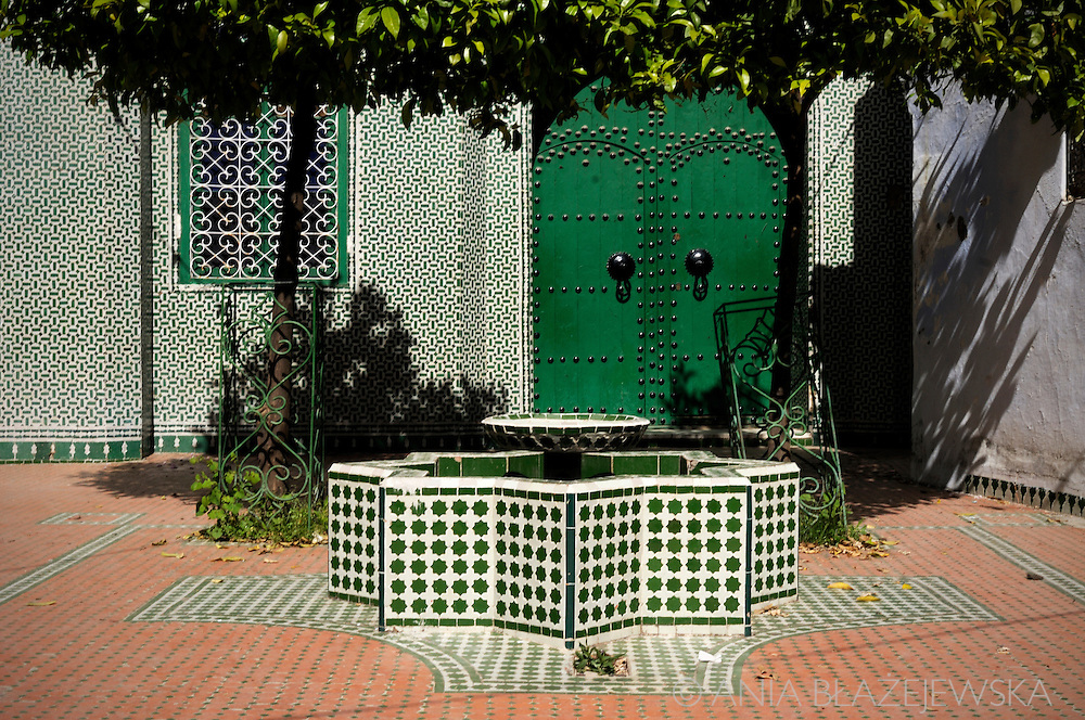 Morocco, Chefchaouen. Green oasis in the blue town.