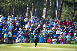 May 11, 2018 - Ponte Vedra Beach, FL, USA - The Players Championship 2018 at TPC Sawgrass..Tiger Woods on 14 green. (Credit Image: © Bill Frakes via ZUMA Wire)
