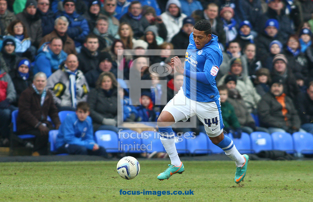 Picture by Rob Fisher/Focus Images Ltd +44 7545 398891.23/02/2013.Nathaniel Mendez-Laing of Peterborough United  during the npower Championship match at London Road, Peterborough.