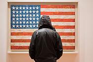 Flag, 1954 Jasper Johns