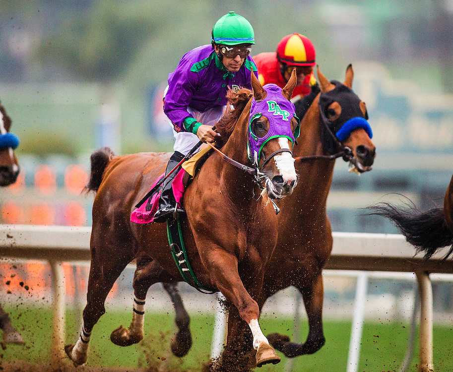February 07 2015: California Chrome and Victor Espinoza race in the San Antonio Stakes at Santa Anita Park in Arcadia CA. Alex Evers/ESW/CSM`