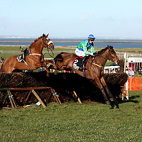 Its Hard To Start takes the jump with Puddencullen and R.P McNamara but without his own P.J O' Neill during the 2nd race at the annual Bellhabour point to point on Sunday.<br /> Photograph by Yvonne Vaughan