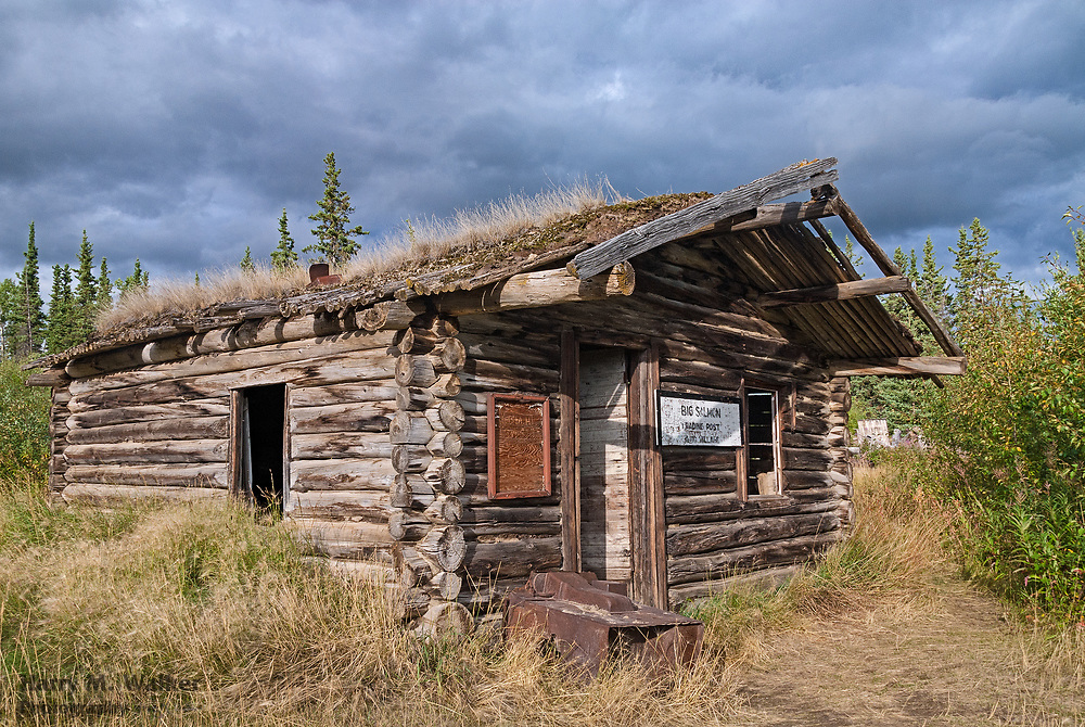 Remains of old log cabin used as a trading post at confluence of the Big Salmon and Yukon Rivers; Yukon Territory Canada