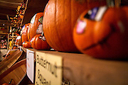 Cutely-decorated pumpkins adorn the souvenir shop of Carroll's Pumpkin Farm south of Grinnell on Thursday.